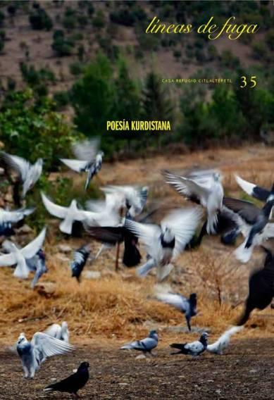 http://www.casarefugio.com/?p=1027